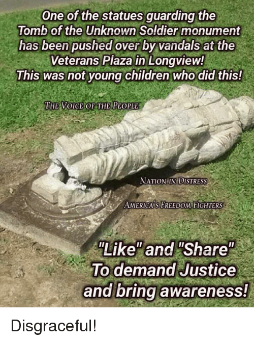 "Children, Memes, and The Voice: One of the statues guarding the  Tomb of the Unknown Soldier monument  has been pushed over by vandals at the  Veterans Plaza in Longview!  This was not young children who did this!  THE VOICE OF THE PEOPLE  NATION IN DISTRESS  AMERICA'S FREEDOM FIGHTERS  Like"" and ""Share""  To demand Justice  and bring awareness! Disgraceful!"