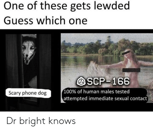 One of These Gets Lewded Guess Which One SCP-166 100% of