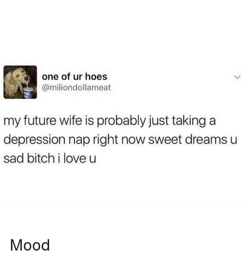 Bitch, Future, and Hoes: one of ur hoes  @miliondollameat  my future wife is probably just taking a  depression nap right now sweet dreams u  sad bitch i love u Mood