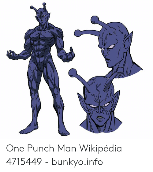One Punch Man Wikipédia 4715449 - Bunkyoinfo | One-Punch Man