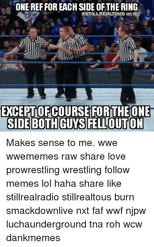 Memes, Wcw, and 🤖: ONE REFFOR EACH SIDE OFTHE RING  CSTILL REALTOUS on IG  EXCEPTOFCOURSE FOR THEIONE  SIDE BOTHGUYSFELLOUTON Makes sense to me. wwe wwememes raw share love prowrestling wrestling follow memes lol haha share like stillrealradio stillrealtous burn smackdownlive nxt faf wwf njpw luchaunderground tna roh wcw dankmemes