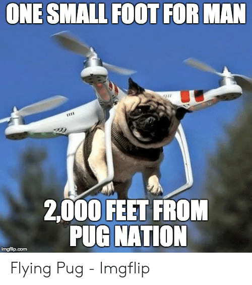 ONE SMALL FOOT FOR MAN 2000 FEET FROM PUG NATION Imgflipcom