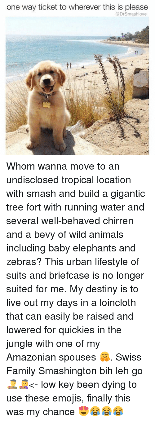 Low Key, Memes, and Baby Elephant: one way ticket to wherever this is please  DrSmashlove Whom wanna move to an undisclosed tropical location with smash and build a gigantic tree fort with running water and several well-behaved chirren and a bevy of wild animals including baby elephants and zebras? This urban lifestyle of suits and briefcase is no longer suited for me. My destiny is to live out my days in a loincloth that can easily be raised and lowered for quickies in the jungle with one of my Amazonian spouses 🤗. Swiss Family Smashington bih leh go 👨🎨👩🎨<- low key been dying to use these emojis, finally this was my chance 😍😂😂😂