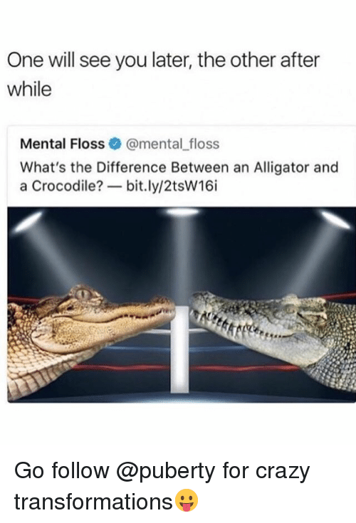 Crazy, Memes, and Alligator: One will see you later, the other after  while  Mental Floss@mental_floss  What's the Difference Between an Alligator and  a Crocodile?一bit.ly/2tsw16i Go follow @puberty for crazy transformations😛
