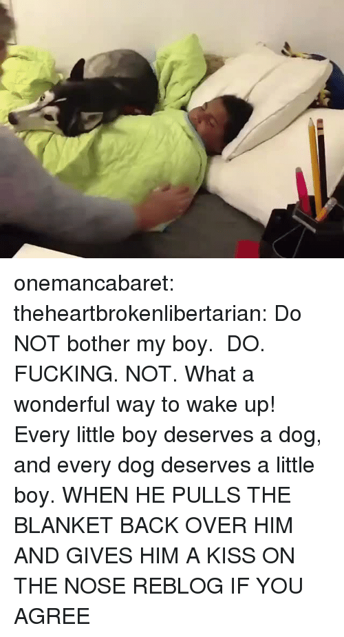 Fucking, Tumblr, and Blog: onemancabaret:  theheartbrokenlibertarian:  Do NOT bother my boy.  DO. FUCKING. NOT. What a wonderful way to wake up! Every little boy deserves a dog, and every dog deserves a little boy.   WHEN HE PULLS THE BLANKET BACK OVER HIM AND GIVES HIM A KISS ON THE NOSE REBLOG IF YOU AGREE