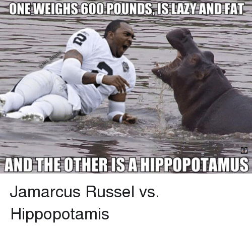 Nfl, Fat, and The Others: ONEWEIGHS 600 POUNDS ISLALY AND FAT  AND THE OTHER ISA HIPPOPOTAMUS Jamarcus Russel vs. Hippopotamis