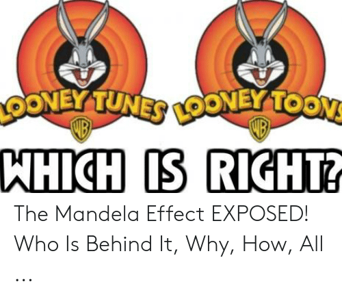 Oney Tuner Ooney Toon Wb Which Is Right D The Mandela Effect
