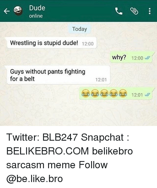 Be Like, Dude, and Meme: online  Today  Wrestling is stupid dude! 12:00  why? 12:00  Guys without pants fighting  for a belt  12:01  12:01 Twitter: BLB247 Snapchat : BELIKEBRO.COM belikebro sarcasm meme Follow @be.like.bro