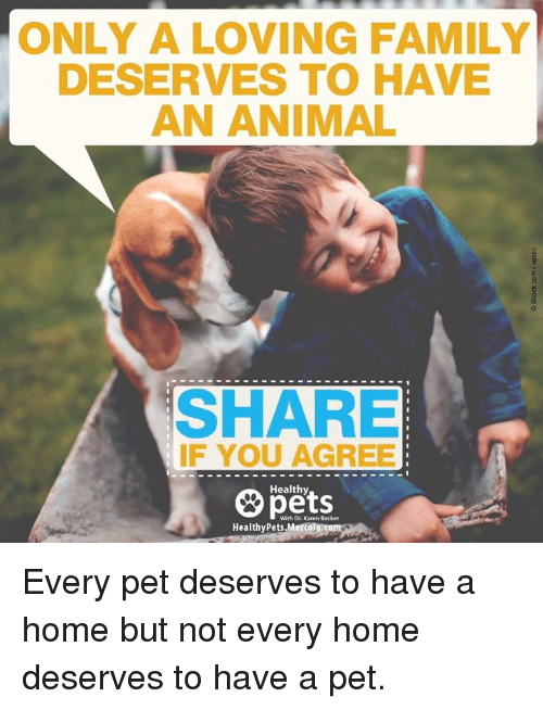 Memes, 🤖, and Pet: ONLY A LOVING FAMILY  DESERVES TO HAVE  AN ANIMAL  SHARE  IF YOU AGREE  Healthy  With Dr. Karen Becker  Healthy Pets,Mercola Every pet deserves to have a home but not every home deserves to have a pet.