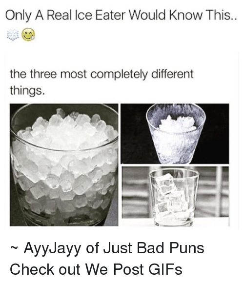 Bad, Gif, and Memes: Only A Real Ice Eater Would Know This..  the three most completely different  things. ~ AyyJayy of Just Bad Puns  Check out We Post GIFs