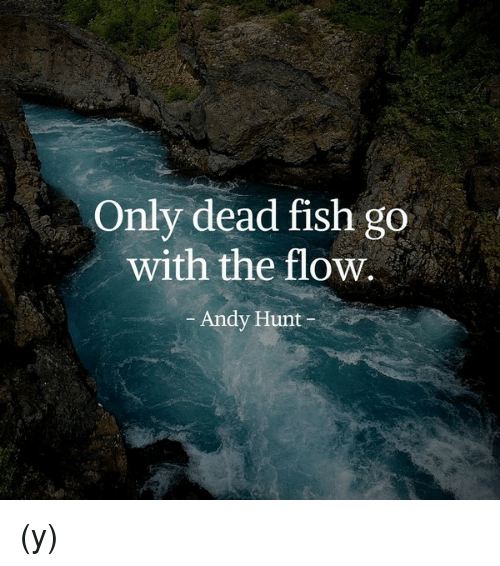 Only dead fish go with the flow andy hunt y meme on for Only dead fish go with the flow