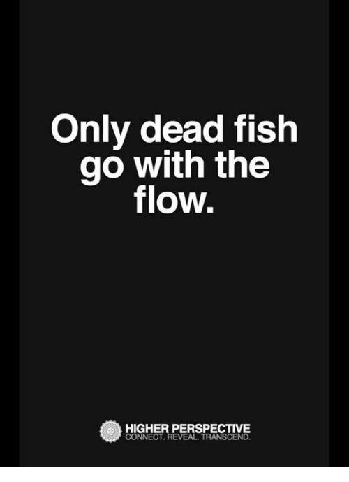 Search transcendance memes on for Only dead fish go with the flow