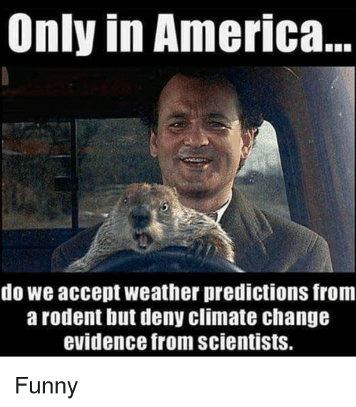 America, Funny, and Weather: Only in America  do we accept weather predictions from  arodent but deny climate change  evidence from scientists. Funny