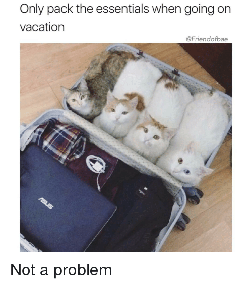 Funny Girl Memes And Packing Only Pack The Essentials When Going On Vacation