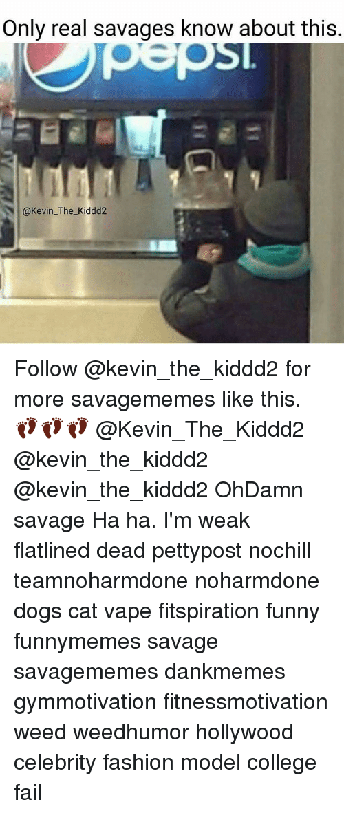 Memes, 🤖, and Weeds: Only real savages know about this  @Kevin The Kiddd2 Follow @kevin_the_kiddd2 for more savagememes like this. 👣👣👣 @Kevin_The_Kiddd2 @kevin_the_kiddd2 @kevin_the_kiddd2 OhDamn savage Ha ha. I'm weak flatlined dead pettypost nochill teamnoharmdone noharmdone dogs cat vape fitspiration funny funnymemes savage savagememes dankmemes gymmotivation fitnessmotivation weed weedhumor hollywood celebrity fashion model college fail