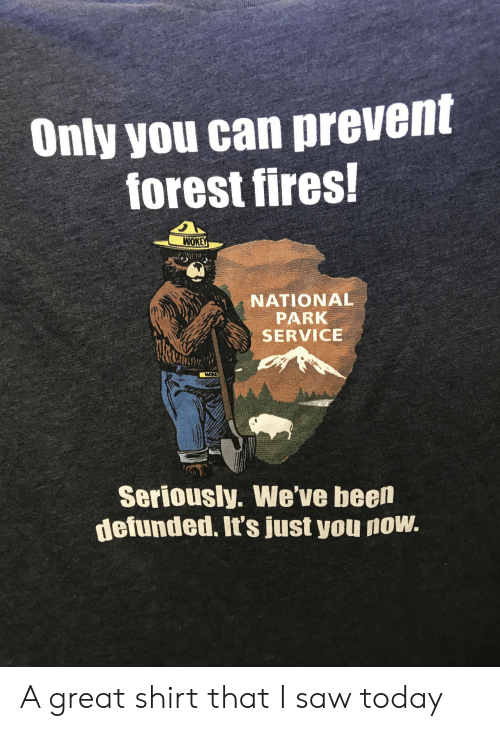 Saw, Today, and Been: Only you can prevent  forest fires!  WOK  NATIONAL  PARK  SERVICE  Seriously. We've been  defunded. It's just you now. A great shirt that I saw today