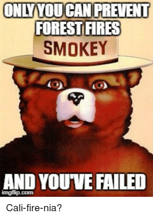 onlyyou can prevent forest fires smokey and you ve failed fire