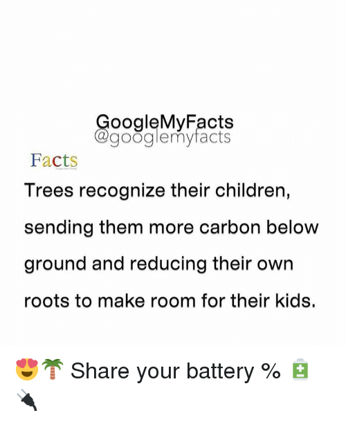 children facts and google ooglemy facts google my facts facts trees recognize their