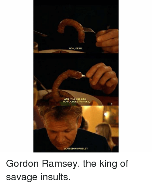 Memes, 🤖, and King: OOH, DEAR.  AND IT LOOKS LIKE  TWO POODLES PENISES.  DOUSED IN PARSLEY, Gordon Ramsey, the king of savage insults.