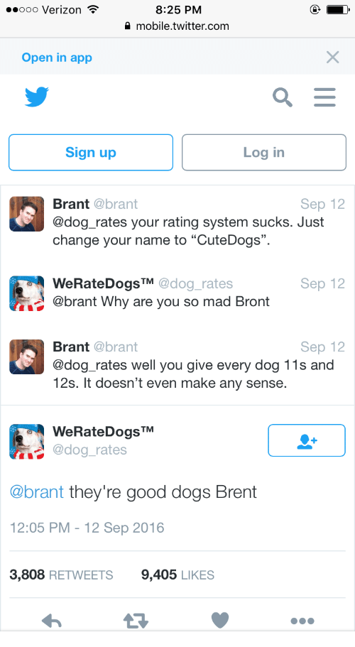 Good Dogs Bront