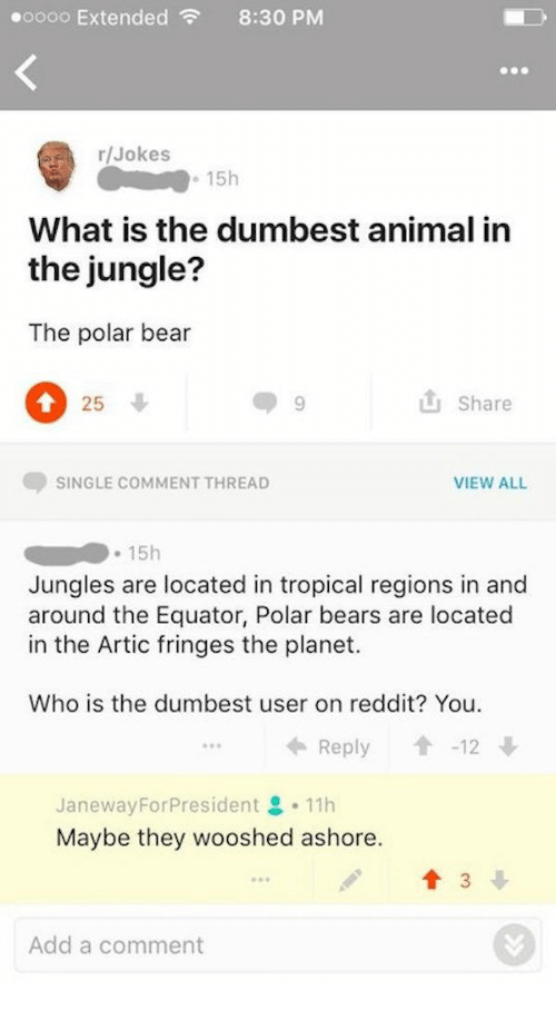 Reddit, Animal, and Bear: oooo Extended8:30 PMM  r/Jokes  15h  What is the dumbest animal in  the jungle?  The polar bear  25  9  Share  SINGLE COMMENT THREAD  VIEW ALL  Jungles are located in tropical regions in and  around the Equator, Polar bears are located  in the Artic fringes the planet.  Who is the dumbest user on reddit? You  Reply-12  やや  JanewayForPresident 으 . 11h  Maybe they wooshed ashore.  89  Add a comment