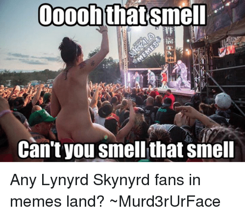 ooooh that smell cant you smell that smell any lynyrd 1635479 ✅ 25 best memes about meme land meme land memes,Meme Land