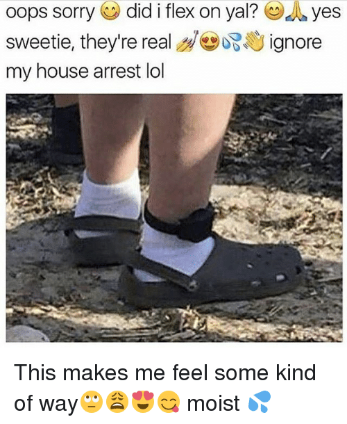 Flexing, Lol, and Memes: oops Sorry  did i flex on yal? d yes  sweetie, they're real  ignore  my house arrest lol This makes me feel some kind of way🙄😩😍😋 moist 💦