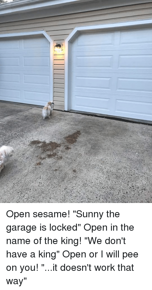 Open Sesame Sunny The Garage Is Locked Open In The Name Of The King