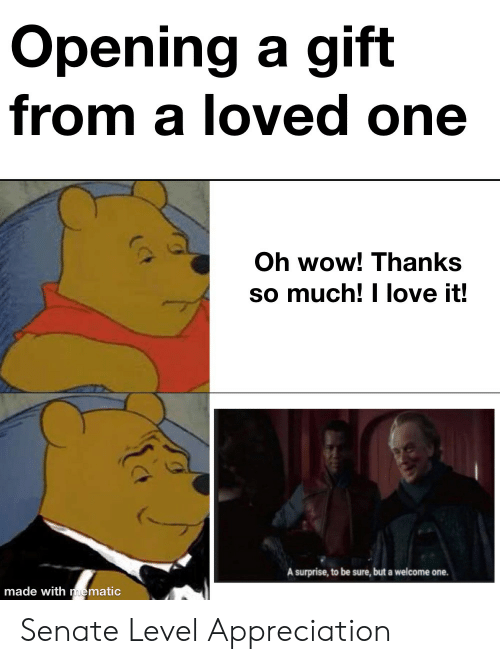 Love, Wow, and Senate: Opening a gift  from a loved one  Oh wow! Thanks  so much! I love it!  A surprise, to be sure, but a welcome one.  made with mematic Senate Level Appreciation