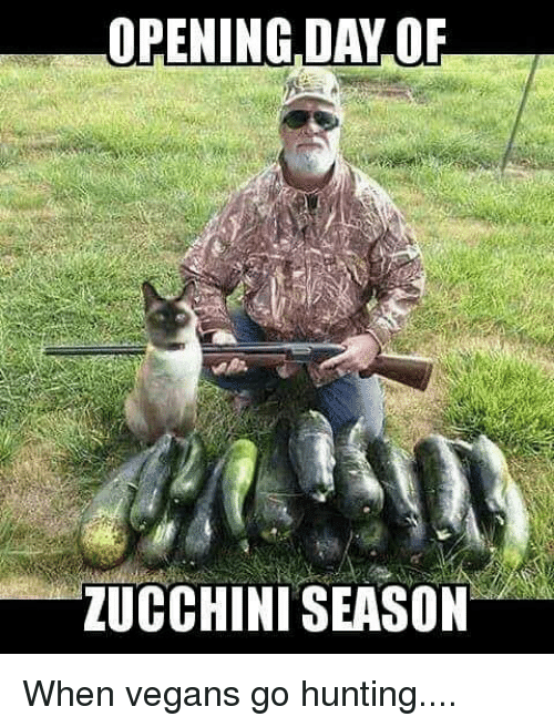 Image result for zucchini hunting season