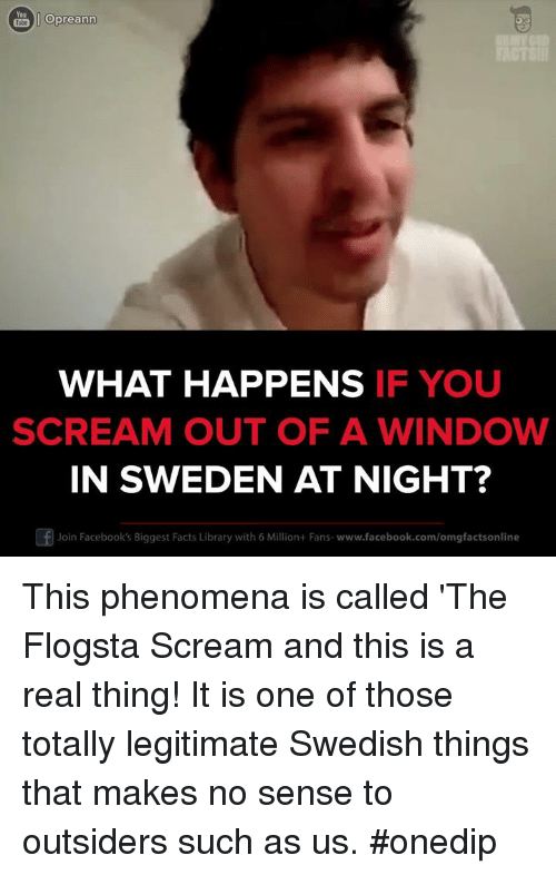 Memes, Scream, and Windows: Opreann  WHAT HAPPENS  IF YOU  SCREAM OUT OF A WINDOW  IN SWEDEN AT NIGHT?  Of Join Facebook's Biggest Facts Library with 6 Million+Fans- www.facebook.com/omgfactsonline This phenomena is called 'The Flogsta Scream and this is a real thing! It is one of those totally legitimate Swedish things that makes no sense to outsiders such as us. #onedip