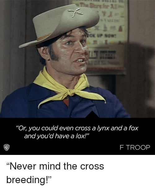 """Memes, Cross, and Mind: """"Or, you could even cross a lynx and a fox  and you'd have a lox!""""  F TROOP """"Never mind the cross breeding!"""""""