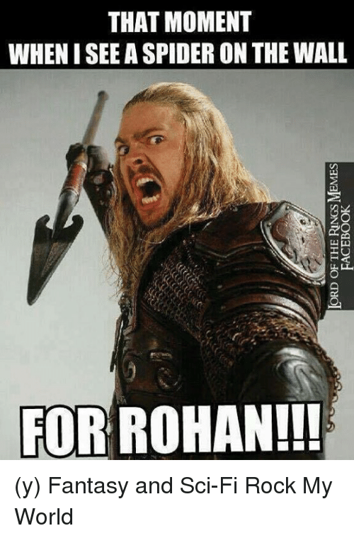 Facebook, Memes, and Spider: ORD OF THE RINGS MEMES  FACEBOOK  THAT MOMENT  WHEN I SEE A SPIDER ON THE WALL  FF  FOR ROHAN!! (y) Fantasy and Sci-Fi Rock My World