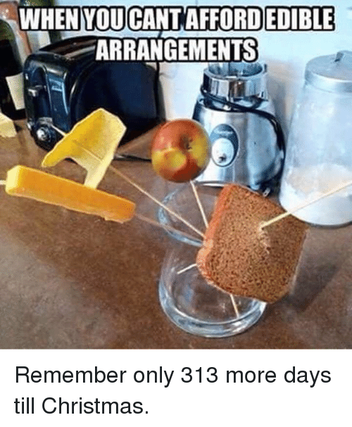 Christmas, Memes, and 🤖: ORDEDIBLE  WHEN ARRANGEMENTS Remember only 313 more days till Christmas.