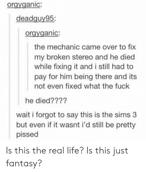 Life, The Sims, and The Sims 3: orgyganic:  deadquv95:  oravganic:  the mechanic came over to fix  my broken stereo and he died  while fixing it and i still had to  pay for him being there and its  not even fixed what the fuck  he died????  wait i forgot to say this is the sims 3  but even if it wasnt i'd still be pretty  pissed Is this the real life? Is this just fantasy?