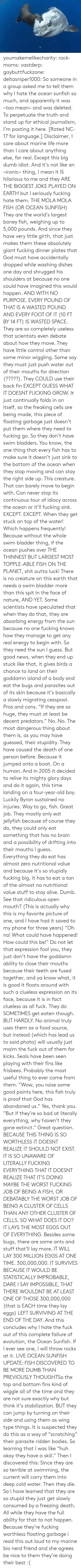 Alive, Apparently, and Bad: ORihad Herrma M  S youmakemelikecharity:  rock-moms:  vastderp:  gaybuttfuckzone:  deltasniper1000:  So someone in a group asked me to tell them why I hate the ocean sunfish so much, and apparently it was ~too mean~ and was deleted. To perpetuate the truth and stand up for ethical journalism, I'm posting it here. [Rated NC-17 for language.]  Disclaimer, I care about marine life more than I care about anything else, for real. Except this big dumb idiot. And it's not like an ~ironic~ thing, I mean it IS hilarious to me and they ARE THE BIGGEST JOKE PLAYED ON EARTH but I seriously fucking hate them.  THE MOLA MOLA FISH (OR OCEAN SUNFISH)  They are the world's largest boney fish, weighing up to 5,000 pounds. And since they have very little girth, that just makes them these absolutely giant fucking dinner plates that God must have accidentally dropped while washing dishes one day and shrugged his shoulders at because no one could have imagined this would happen. AND WITH NO PURPOSE. EVERY POUND OF THAT IS A WASTED POUND AND EVERY FOOT OF IT (10 FT BY 14 FT) IS WASTED SPACE.  They are so completely useless that scientists even debate about how they move. They have little control other than some minor wiggling. Some say they must just push water out of their mouths for direction (?????). They COULD use their back fin EXCEPT GUESS WHAT IT DOESNT FUCKING GROW. It just continually folds in on itself, so the freaking cells are being made, this piece of floating garbage just doesn't put them where they need to fucking go.   So they don't have swim bladders. You know, the one thing that every fish has to make sure it doesn't just sink to the bottom of the ocean when they stop moving and can stay the right side up. This creature. That can barely move to begin with. Can never stop its continuous tour of idiocy across the ocean or it'll fucking sink. EXCEPT. EXCEPT. When they get stuck on top of the water! Which happens frequently! Because without the wh