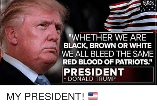 """Donald Trump, Memes, and Patriotic: ORN  """"WHETHER WE ARE  BLACK, BROWN OR WHITE  WE ALL BLEED THE SAME  RED BLOOD OF PATRIOTS  PRESIDENT  DONALD TRUMP MY PRESIDENT! 🇺🇸"""