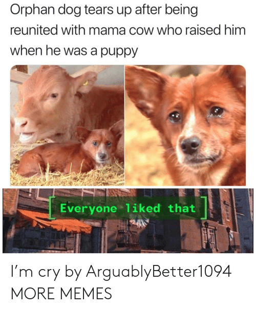 Dank, Memes, and Target: Orphan dog tears up after being  reunited with mama cow who raised him  when he was a puppy  Everyone 1iked that I'm cry by ArguablyBetter1094 MORE MEMES