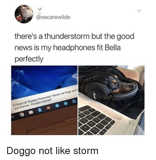 Dogs, Music, and News: @oscarewilde  there's a thunderstorm but the good  news is my headphones fit Bella  perfectly  5 Hours of 'Anxiety Prevention Music for Dogs and  and Storms Problem Solved <p>Doggo not like storm</p>