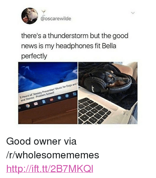 """Dogs, Music, and News: @oscarewilde  there's a thunderstorm but the good  news is my headphones fit Bella  perfectly  5 Hours of Anxiety Prevention Music for Dogs and  and Storms-Problem Solved <p>Good owner via /r/wholesomememes <a href=""""http://ift.tt/2B7MKQl"""">http://ift.tt/2B7MKQl</a></p>"""
