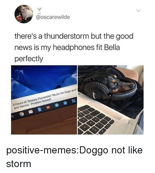 Dogs, Memes, and Music: @oscarewilde  there's a thunderstorm but the good  news is my headphones fit Bella  perfectly  5 Hours of Anxiety Prevention Music for Dogs and  and Storms-Problem Solved positive-memes:Doggo not like storm