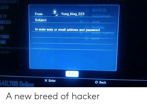 Email, Back, and King: OSR3FL3X  From Yung King 223  Subject  D TY  RACKS  TE  TIONS  ORE  Ruudaldo  hi mate wats ur email address and password  Enter  O Back  İ407880nline A new breed of hacker