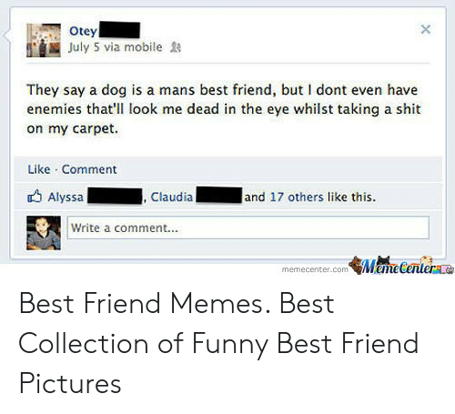 Best Friend, Funny, and Memes: Otey  July 5 via mobile  They say a dog is a mans best friend, but I dont even have  enemies that'll look me dead in the eye whilst taking a shit  on my carpet.  Like Comment  Alyssa  and 17 others like this.  , Claudial  Write a comment..  MameCentera  memecenter.com Best Friend Memes. Best Collection of Funny Best Friend Pictures