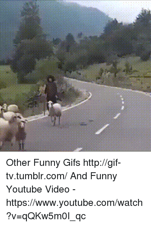 Image of: Kids Funny Funny Gifs And Gif Other Funny Gifs Httpgif Getjar Other Funny Gifs Httpgiftvtumblrcom And Funny Youtube Video