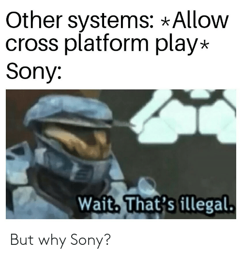 Sony, Cross, and Play: Other systems: *Allow  cross platform play*  Sony:  Waith That's illegal But why Sony?