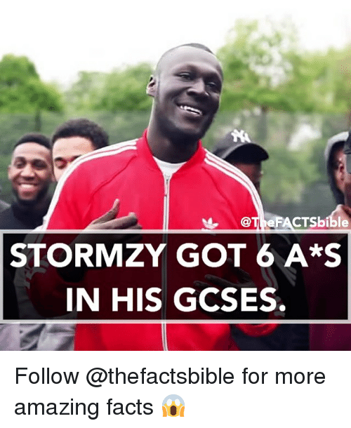 Memes, Otis, and 🤖: OTI FA  STORMZY GOT 6 A*S  IN HIS GCSES. Follow @thefactsbible for more amazing facts 😱