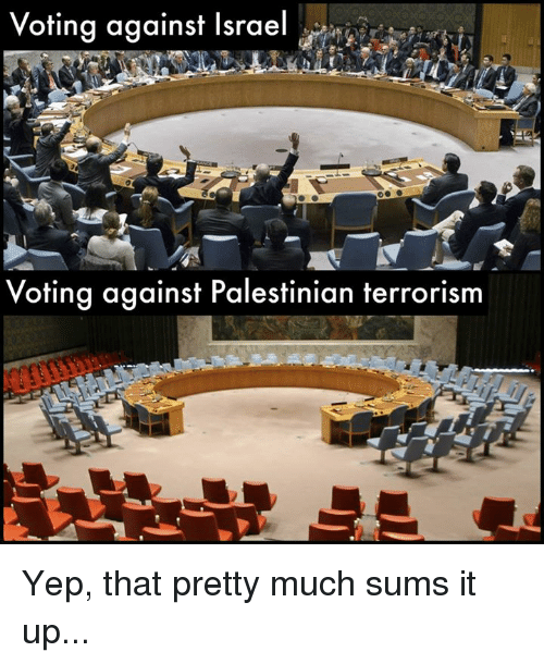 Memes, Israel, and Terrorism: oting against Israel my ra  Voting against Palestinian terrorism Yep, that pretty much sums it up...