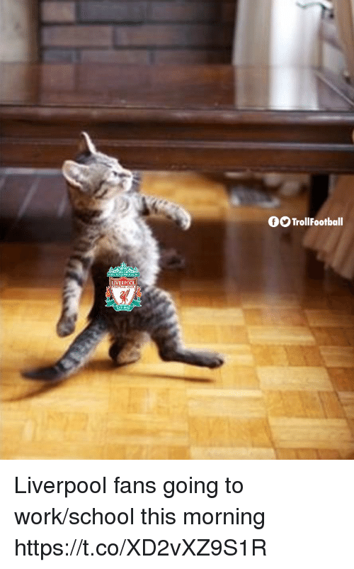 Memes, School, and Work: OTrollFootball  LIVERPOOL  EST 189 Liverpool fans going to work/school this morning https://t.co/XD2vXZ9S1R