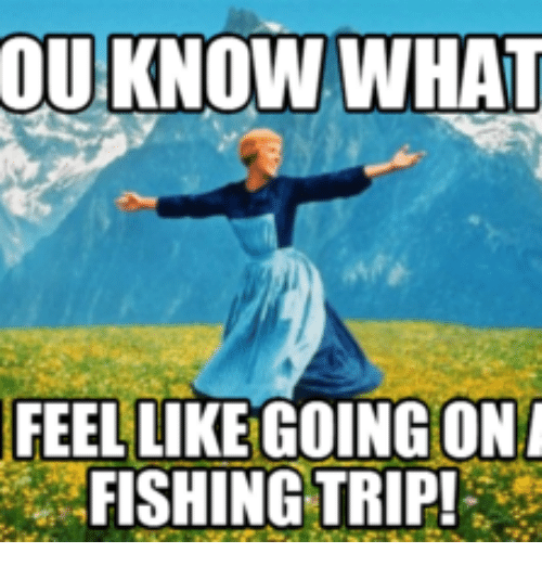 ou know what feellike going on fishing trip 14932202 ✅ 25 best memes about feel trip meme feel trip memes