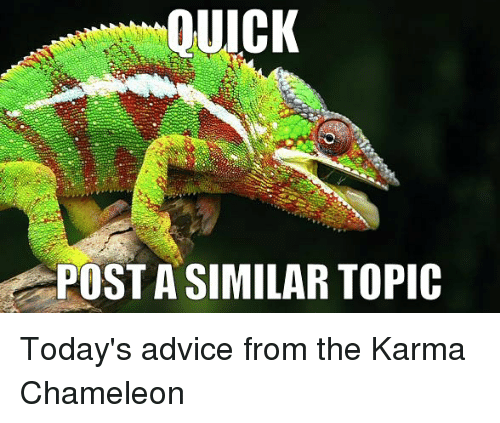 e5081b2a8 Advice, Funny, and Chameleon: OUICK POSTA SIMILAR TOPIC Today's advice from  the Karma
